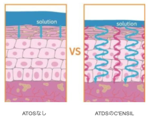 ATDS比較